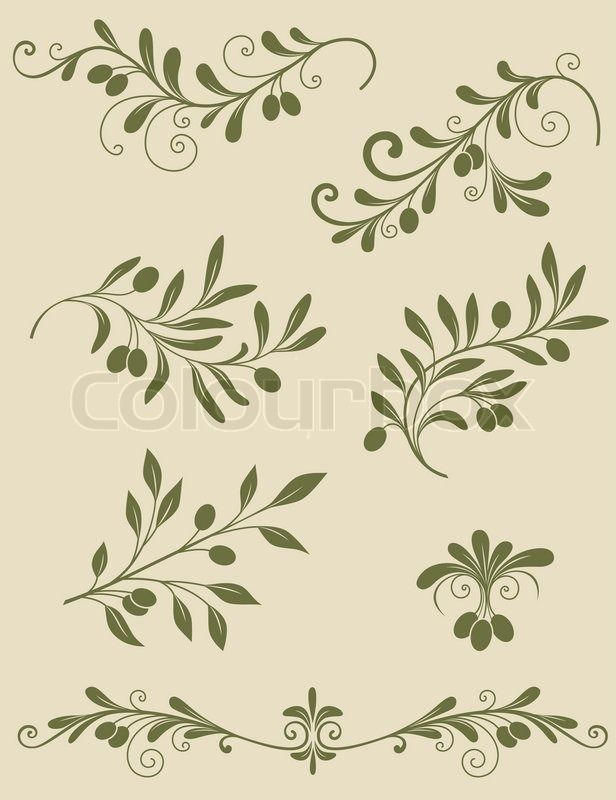 Decorative olive branch | Vector | Colourbox on Colourbox