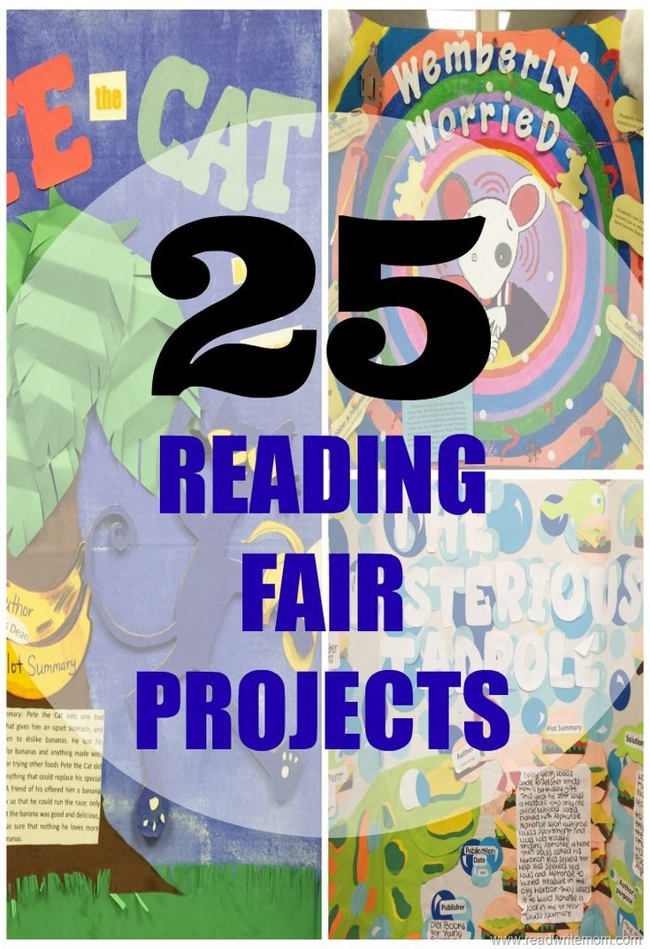 reading book report projects