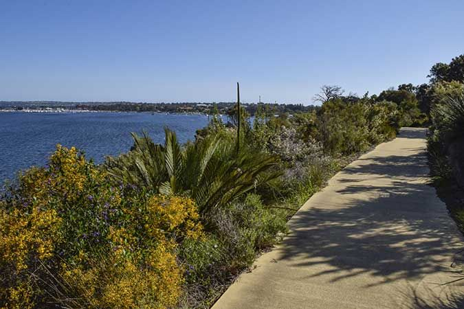An Afternoon Walk Around the Colour of Kings Park, Perth, Australia