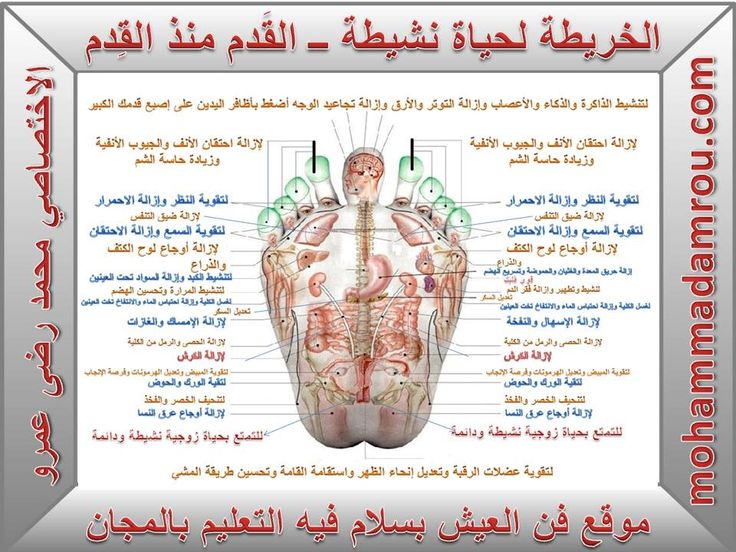 Pin By Ishtar Babylonian On احلام Fitness Nutrition Health Fitness Nutrition Health