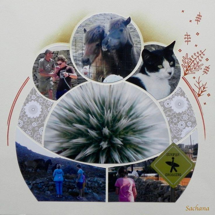 Faune de Mykonos-Gab Perle