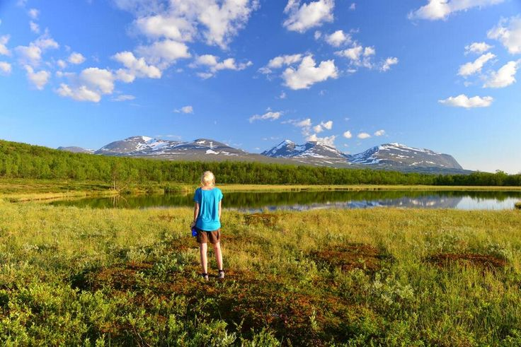 Summer. Abisko in the Kiruna Mountains Sweden.