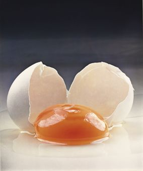 Irving Penn, Broken Egg, New York, 1959.