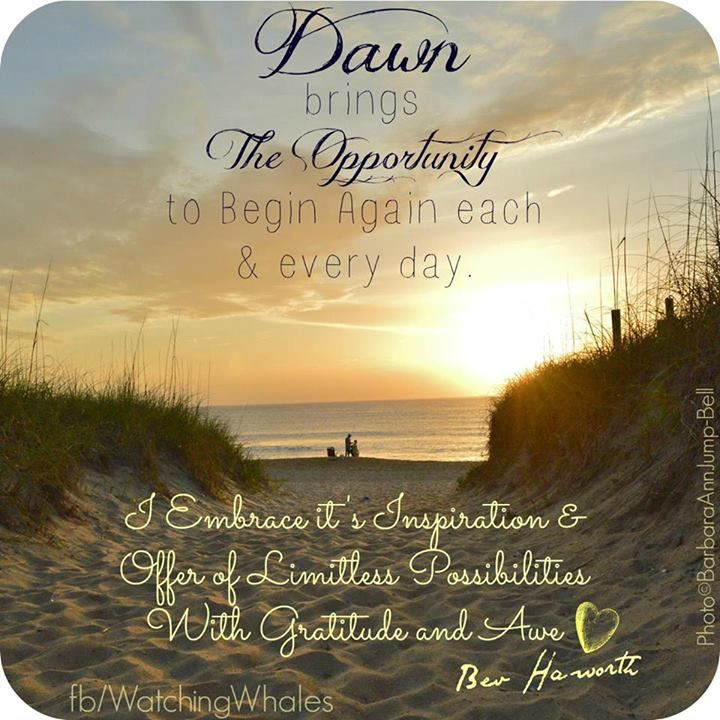 Dawn brings the opportunity to begin again each & every day.