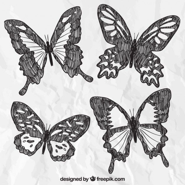 Free vector hand drawn butterflies #1671