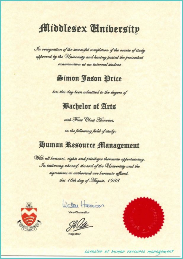 7 Things That You Never Expect On Bachelor Of Human Resource Management Bachelor Of Human Resource In 2020 Human Resource Management Bachelor Of Arts Academic Degree