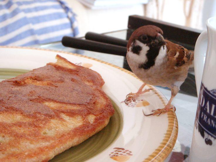 ごはん、パン、麺類などデンプンが大好き。