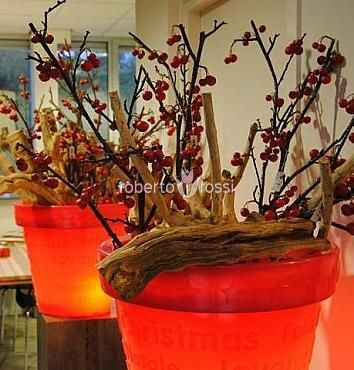 Bloom Christmas tree stand and decorative branches