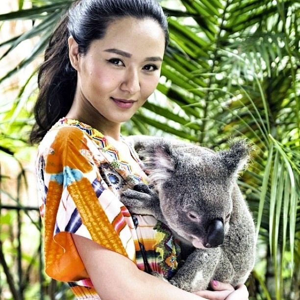 The #beautiful Li Yahong makes a new friend @hamiltonisland #return2paradise #seeaustralia #koala