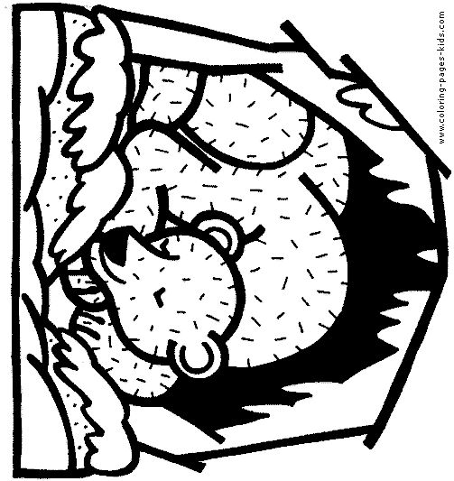 Coloring Pages Of Sleeping Animals : Images about winter on pinterest coloring fun