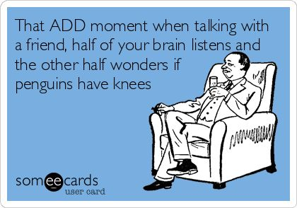 That ADD moment when talking with a friend, half of your brain listens and the other half wonders if penguins have knees.