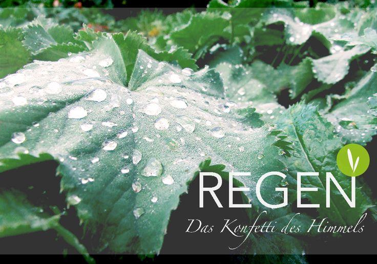 Regen ist das Konfetti des Himmels...