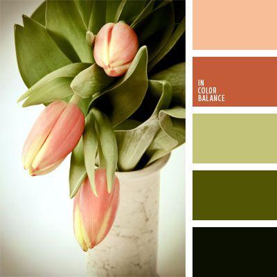 color caqui, color melocotón, color salmón, combinación de colores para decorar interiores, elección del color, oliva, rosa anaranjado, rosado y verde, selección de colores para el diseño de interiores, tonos rosados, tonos verdes, verde, verde oliva oscuro.