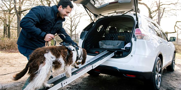 Nissan Pets Transportation Car Has Been Created! Nissan has introduced a new crossover concept, which is adapted for travelling with pets. According to the press service of the brand, Nissan Pets Transportation car is based on X-Trail and has got 4Dogs prefix in the name. It is a specially equipped with a luggage compartment with elements that...