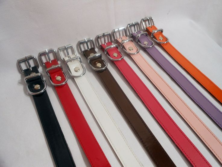 Everyday collars  $15.00 Everyday collars are made from marine vinyl, they are light, durable and water friendly.  They are 20 ml in width and come in a fantastic range of colors with matching leads.  Color options: BLACK  RED  WHITE  ORANGE  DARK BRONZE  PALE PINK  HOT PINK  LILAC