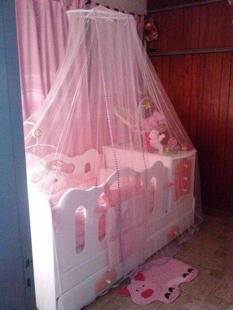 Awww... the beautiful baby crib! Tules de cuna para enamorarse. More pictures!