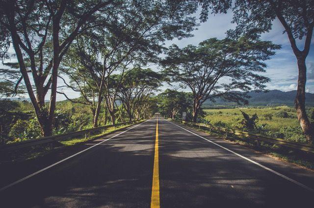 Transport cysternami samochodowymi planowany jest poprzez wybor najlepszych do tego tras logistycznych. #transport #cysternami #samochodowymi | http://stando.com.pl/oferta-transportowa/
