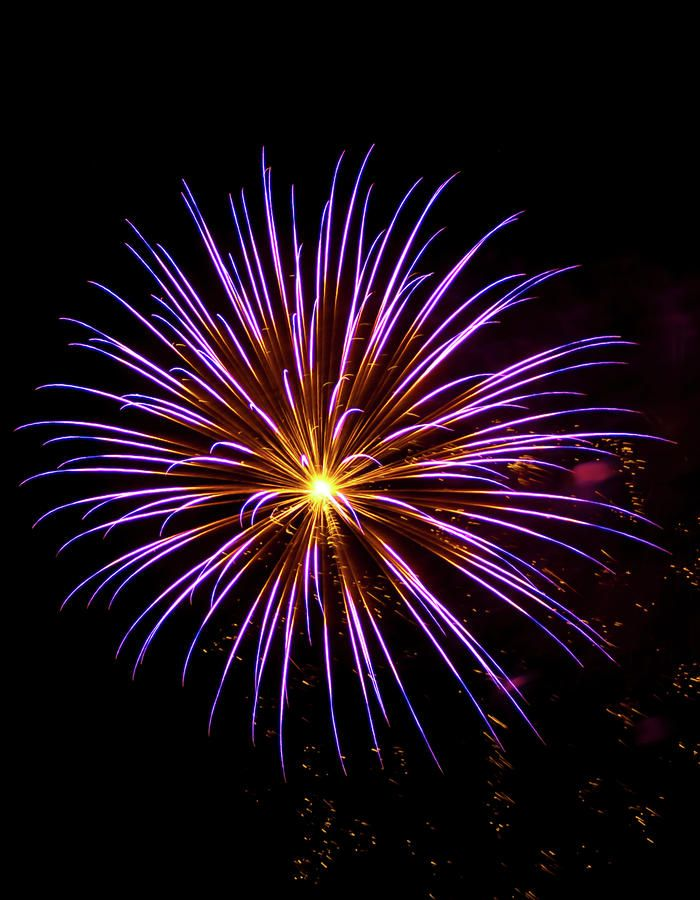 best 4th july fireworks tampa bay