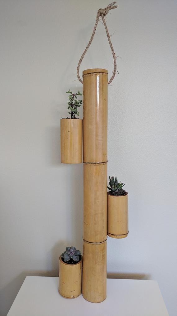 Bamboo Succulent Planter Diy