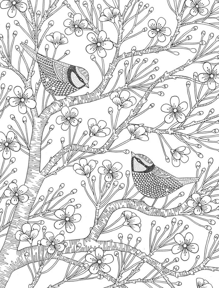 james newman gray relaxation bird coloring page