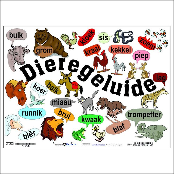 Dieregeluide Charts Fun and colourful wall chart. Perfect for teachers and parents. 455 x 320mmen gelamineerd. Product code: A-DGE