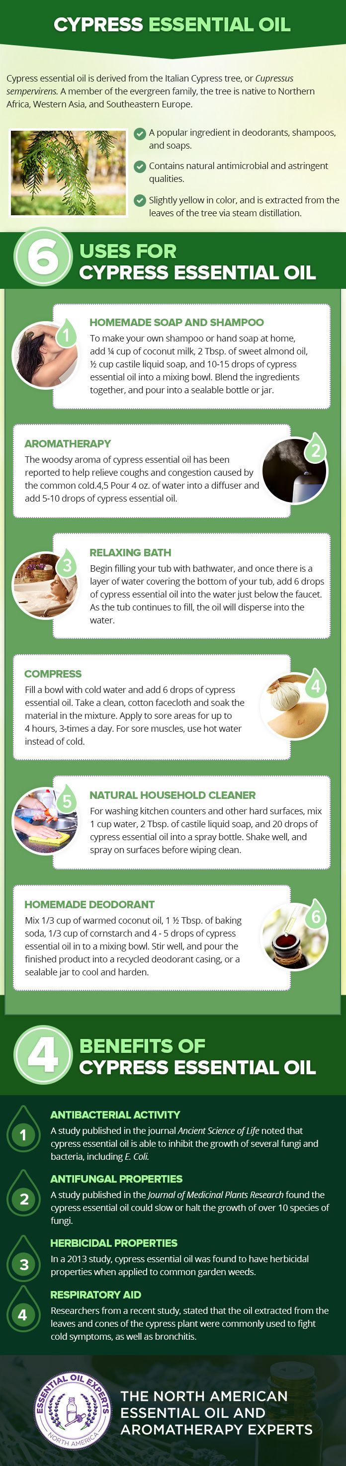 Cypress Essential Oil Uses & Benefits