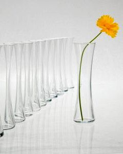 "good deal on the glass  Clear Glass 8""   Bud Vases $2.99 each / 6 for $1.99 each  - Click to enlarge"