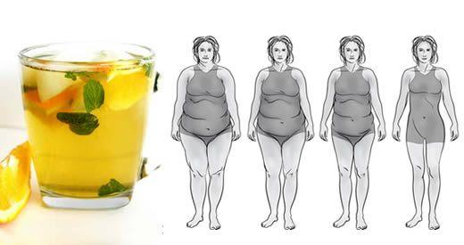 bevanda te verde perdere peso
