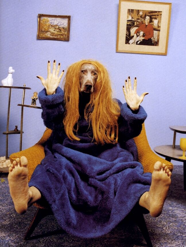 William Wegman, Fingers and Toes, 1996