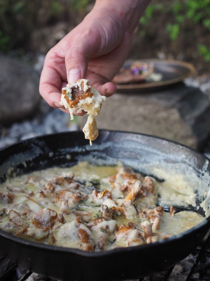 The forest is full of gold & this cheesy chanterelle recipe with Norwegian goat cheese, cooked over an open fire & served with toasted bread, is perfection.