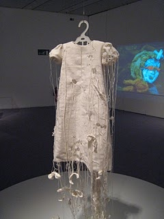 shelly goldsmith - Love this dress-art!   11th December- investigating how Shelly Goldsmith uses text and lace combined in her garments.