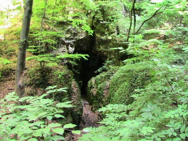 Tudjátok, hogy a Zengő miért zeng, vagy, hogy van egy titkos alagút a Pécsváradi vár alatt? A Mecsek, gyönyörű tájaival ideális kirándulóhely, de azt kevesen tudják, hogy szinte minden barlangjához, sziklájához népmondák kötődnek. Mi...