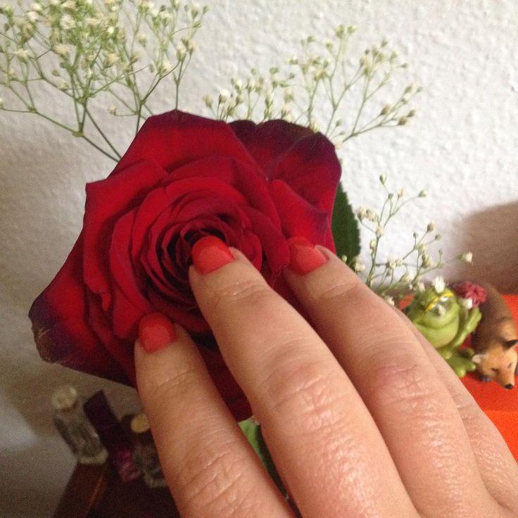 """Same, ahem, rose, different day and different nail polish. Роза та же, лак уже другой - вскакиваю в понедельник в последний вагон уходящего поезда, красное стекло #OPI #OPIBigHairBigNails, известный среди #тегсообществанейлру под названием """"Волосы"""". Итак, роза и руки с Волосами для #МарафонChanel #МарафонChanel_RougeStar #OlgaIonaИЕеНогти #КрасныхМногоНеБывает"""