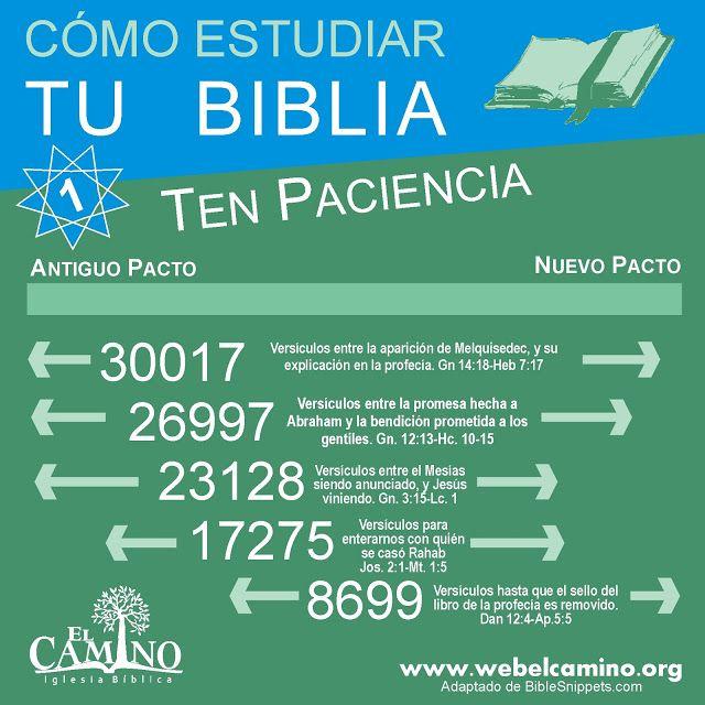 Cómo estudiar la Biblia en 7 sencillos pasos