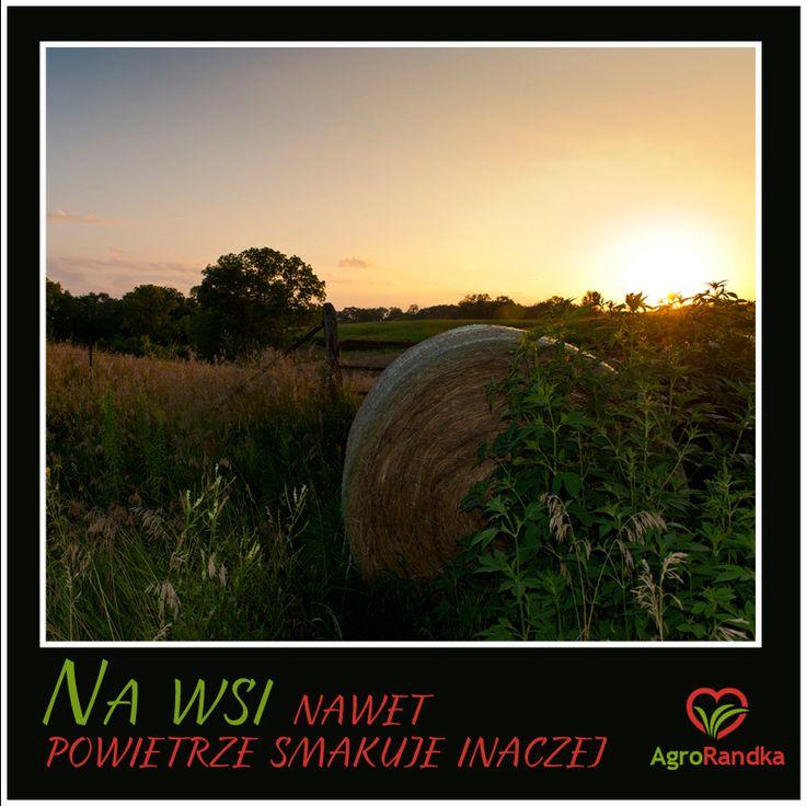Na Wsi nawet powietrze smakuje inaczej #agrorandka #rolnikszukazony #wies #country #love #cytaty
