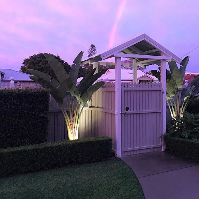Oh my look at the colour of our sunset this afternoon! I walked outside as I could see the light of purple coming through my kitchen and there's a beautiful rainbow above our portico  #beachcottage #beachhouse #outdoors #rainbow #sunset #purple #portico #myhome #mystyle #garden #landscaping #greenthumb #hedges #strelitzia