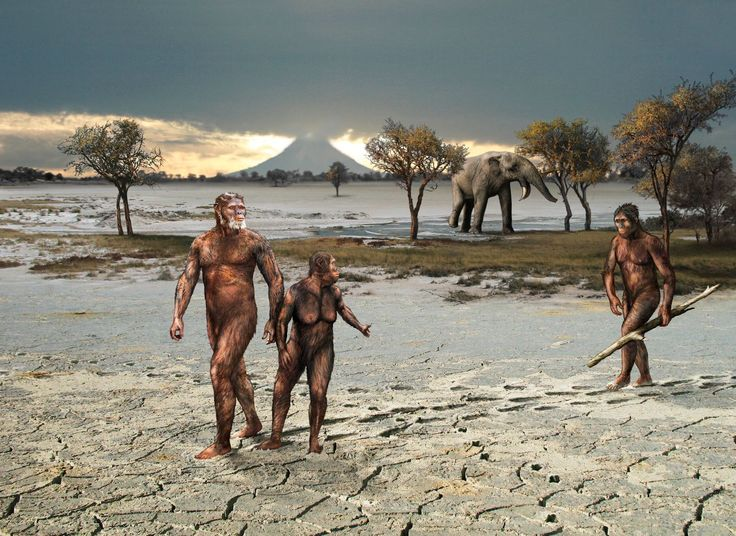 3.6 million years ago the Sadiman Volcano, 20km east of Laetoli in Tanzania was active. It deposited a thin blanket of grey ash across the landscape, which was slowly turned into mud by light rain. Through the mud walked two Australopithecus afarensis, a male and a female. In their footsteps, another of their species mysteriously followed by Robert Nicholls