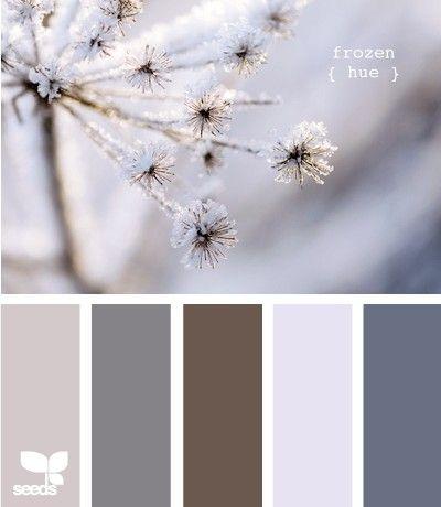 colours by DaisyCombridge