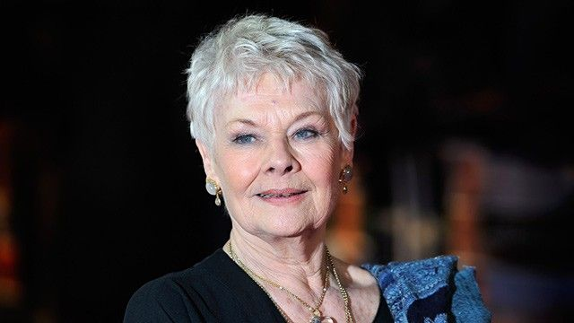 When Judi Dench 'shampooed the dog' for a Bollywood song  , http://bostondesiconnection.com/judi-dench-shampooed-dog-bollywood-song/,  #WhenJudiDench'shampooedthedog'foraBollywoodsong