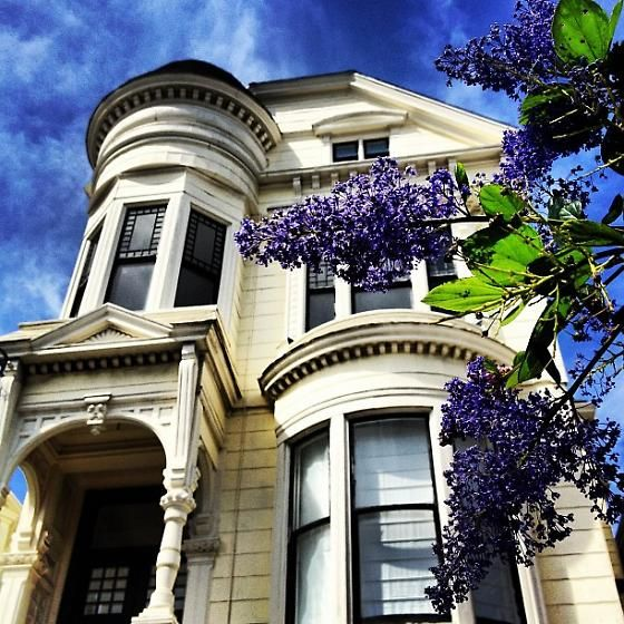 Victorian mansions in the middle of the city-SFPride: San Francisco Icons | 7x7