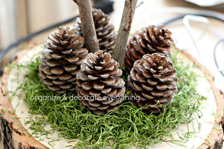 how to make tree slices for centerpieces