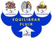 SYNERHGON #equlibrar e #fluir os 3 Capitais #Humano  #Imobilizado  #Intelectual #synerhs   #rmader