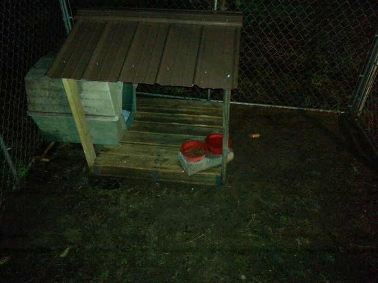 """Copper's """"dry food"""" porch I built outta a pallet, and scraps."""