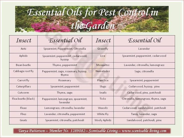 150 Best Images About Essential Oils For Home And Garden: Natural