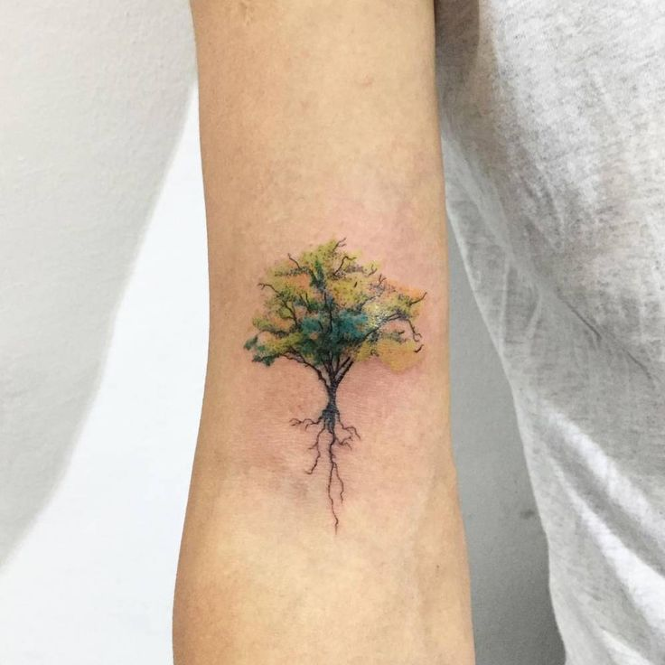 Tree tattoo on the right bicep. Tattoo artist: Hongdam (3/27/16)