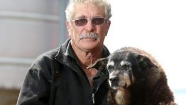 Morto il cane più vecchio del mondo. Maggie aveva 30 anni