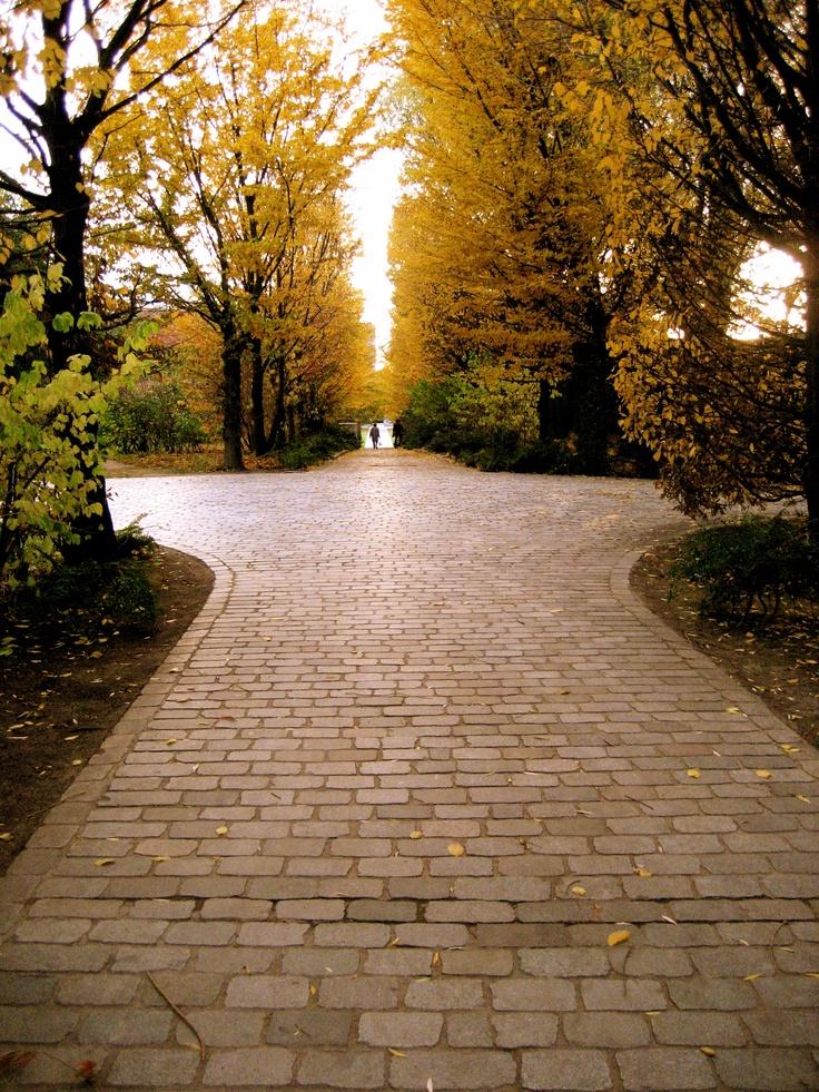 Paris, sus parques, jardines y bosques....Parc Andre Citroen
