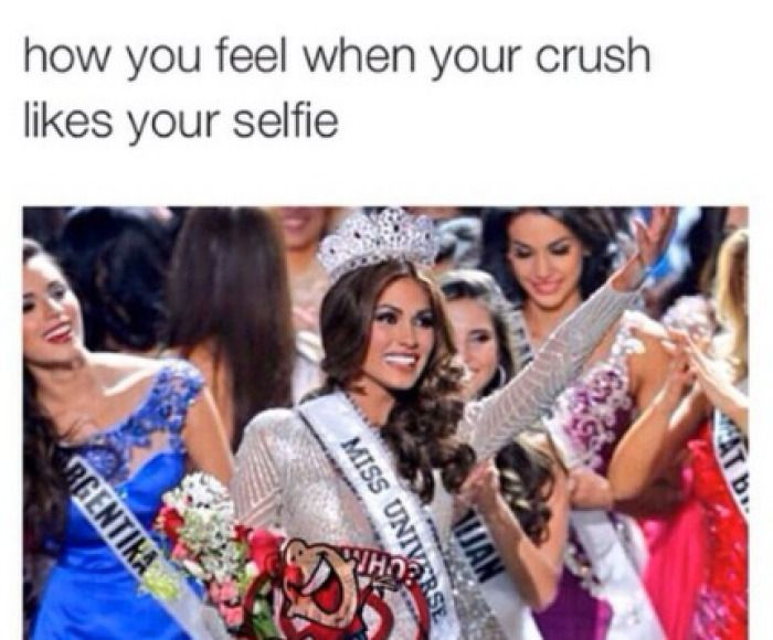 Funny Memes For Crush : When your crush actually likes