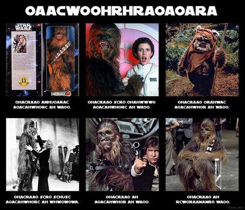 Star Trek vs Star Wars Meme | Los 35 mejores memes de Star Wars