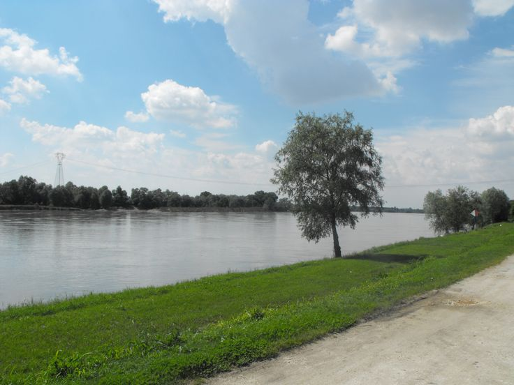 Fiume Po zona lido Ariston - Po river | 30 min by bike - 60 min by foot - 10 min by car
